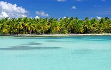 Saona Tropical Beach Dominican...