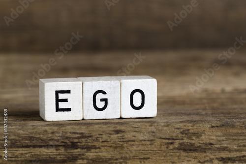 Obraz na plátně The word ego written in cubes