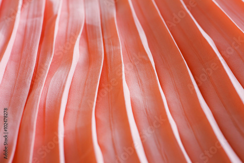 Garden Poster Flamingo pleated skirt fabric texture