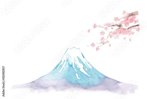 Fotografie, Obraz  富士山、桜