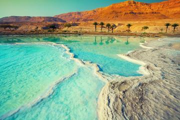 Fototapeta na wymiar Dead sea salt shore