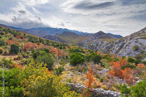Fotografie, Obraz  Autumn in the mountains of Velebit national park in Croatia