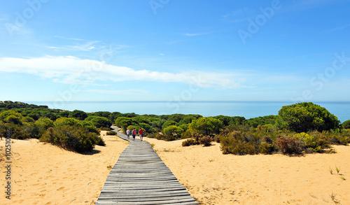 Paraje de Cuesta Maneli en el Parque Nacional de Doñana, provincia de Huelva, España