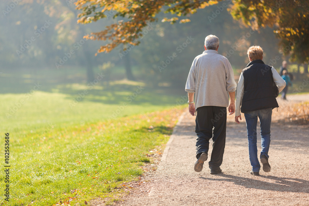 Fototapety, obrazy: Senior citizen couple taking a walk in a park during autumn morning.