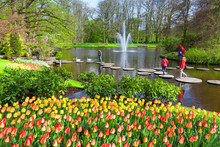 Scenic With Lake In Spring Park Keukenhof, Netherlands