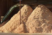 Piles Of Sawdust
