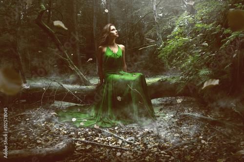 Fotografie, Obraz  Žena na sobě zelené šaty v lese
