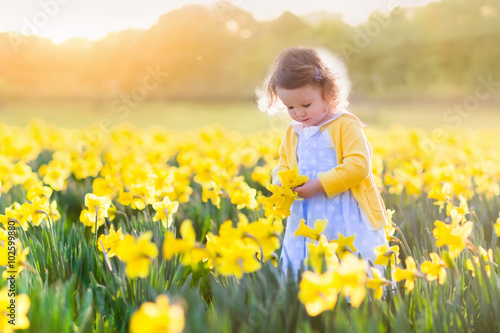 Ingelijste posters Narcis Little girl in daffodil field