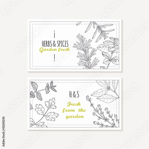 Photo  Business card templates set with hand drawn spicy herbs