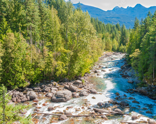 Fototapety, obrazy: Beautiful Mountain River in Vancouver, British Columbia, Canada.