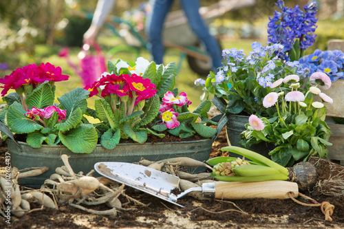 Fotografie, Tablou  Gartenarbeit im Frühling