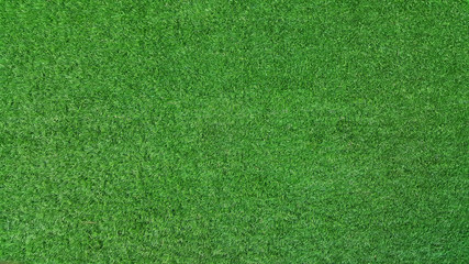artificial grass .