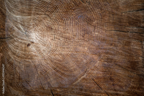 the texture of wood outdoor for background or design #102646267