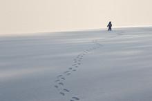Human On Mountain, Winter, Snow, Walk