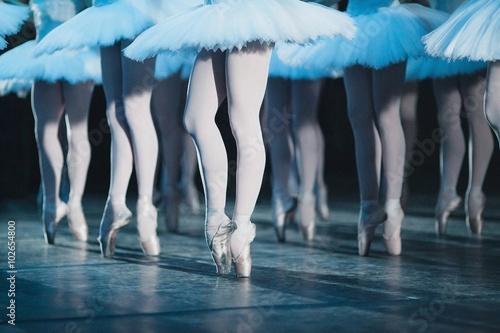 Valokuvatapetti ballet swan lake. ballet statement. ballerinas in the movement.