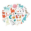 Cute hand drawn cats colorful set arranged in round composition