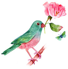 Vintage Style Drawing Of Watercolor Bird With Rose And Butterfly