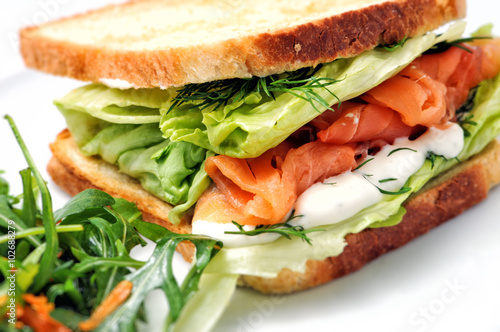 Staande foto Snack toast sandwich with salmon, vegetable and salad on white plate