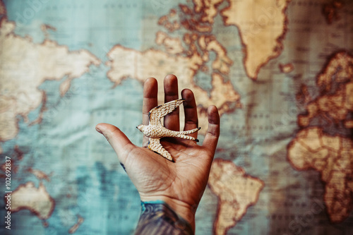Photo Stands World Map Hand Holding a Toy Bird Over a World Map