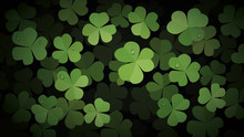 Green Clover Leaves With Dew Drops On Dark Background