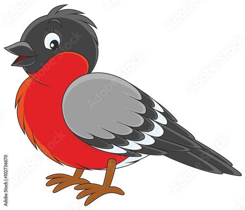 Leinwand Poster Bullfinch