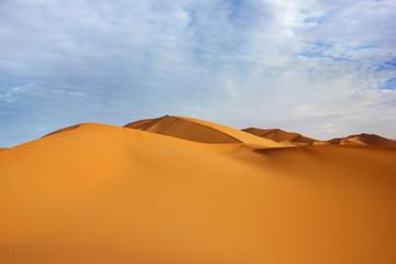 Fototapeta na wymiar Huge sand dunes of the Sahara Desert