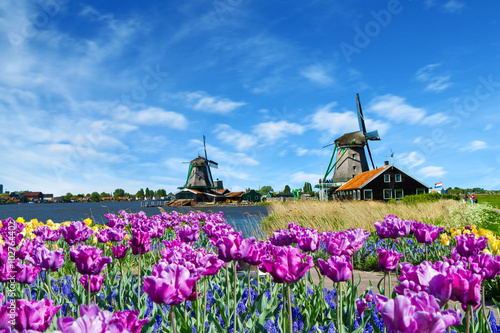 windmill in holland Canvas-taulu