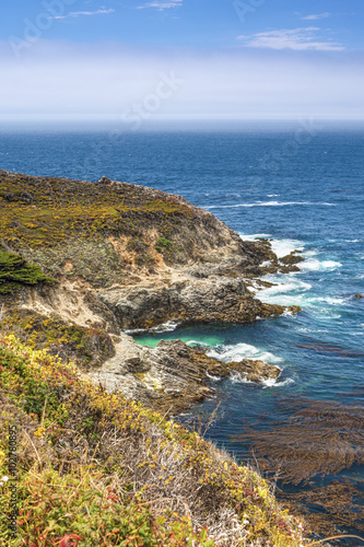 Foto op Canvas Zuid Afrika Blooming Mountains Slopes of Pacific Coastline in Summer Time