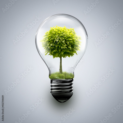 Fotografie, Obraz  tree inside light bulb
