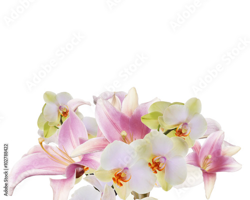 Garden Poster Orchid Light Pink Art beautifil bouquet lily with orchid