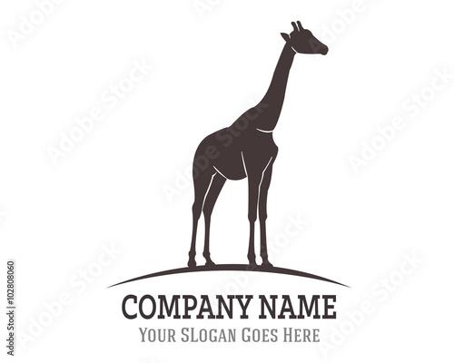 Photo Giraffe Logo