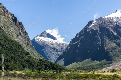hollyford valley landscape