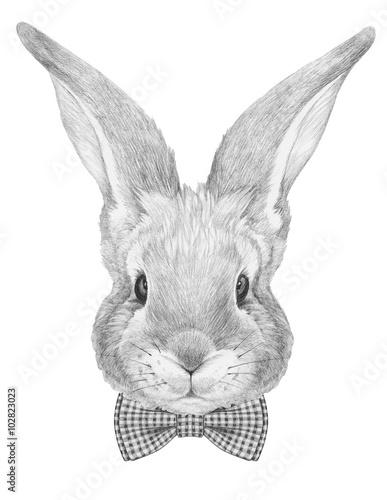 Portret królika z muszką. Ręcznie rysowane ilustracji.