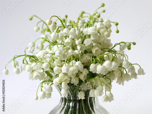 Staande foto Lelietje van dalen Bouquet of spring flowers Lily of the valley in a vase on a white background.