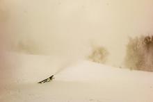 Snowmaking At Ski Resort In January During Snow