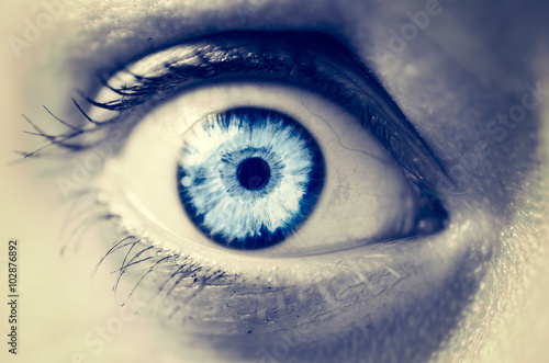 Fototapeta Frightened female eye close up