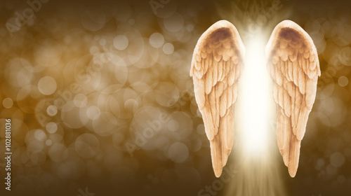 Golden Angel Wings on golden brown Bokeh Banner  - Wide golden brown bokeh background with a large pair of Angel Wings on the right side and a shaft of bright light between