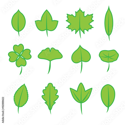 Fototapeta Leaves icon set, Set of green Leaves obraz na płótnie