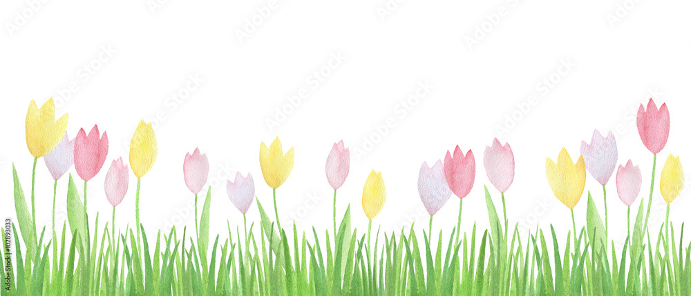 Watercolor flowers and green grass.