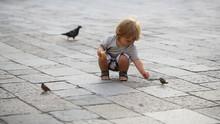 Baby Boy Feeding Birds