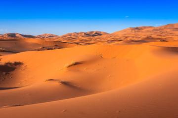 Fototapeta na wymiar Desert dune at Erg Chebbi near Merzouga in Morocco.