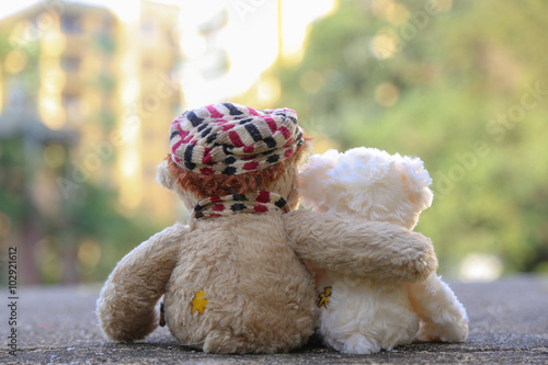 Fotografie, Obraz  Two bears feeling in love.
