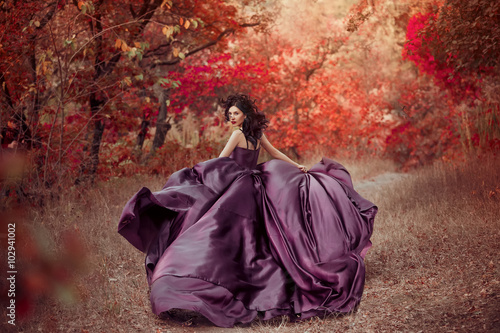 Fotografie, Obraz  Lady in a luxury lush purple dress ,fantastic shot,fairytale princess is walking