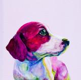 Kumpel Portret młody pies, szczeniak w neonowych kolorach. Patrząc i tęskniąc za uwagą - 102986487