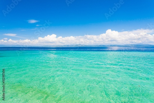Foto op Aluminium Groene koraal day tropical sea