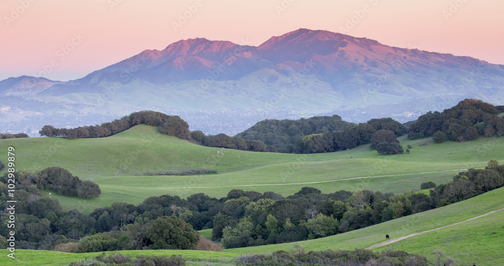Fototapety, obrazy: Sunset over Mount Diablo from Rolling Grassy Hills of Briones Regional Park. Taken from Mott Peak in Contra Costa County, California, USA.