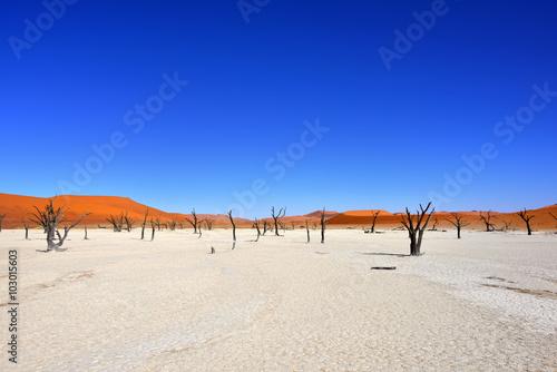 Keuken foto achterwand Donkerblauw Deadvlei, Sossusvlei. Namibia