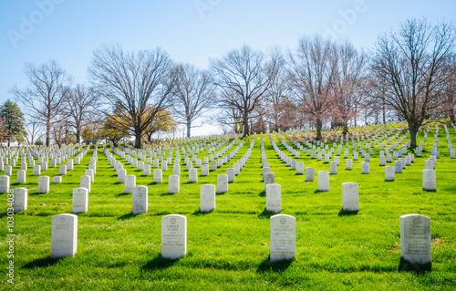 Foto op Canvas Begraafplaats Arlington National Cemetery,