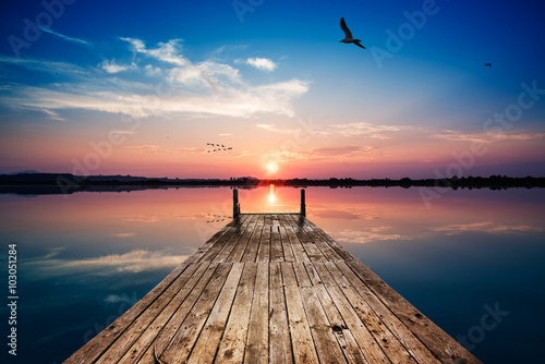 Tablou Canvas Perfectly specular reflection on the pond at sunset with seagull