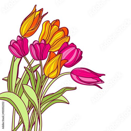 bukiet-recznie-rysowane-rozowe-i-zolte-kwiaty-tulipanow-na-bialym-tle-wektorowy-kwiecisty-wiosny-kartka-z-pozdrowieniami-lub-sztandaru-tlo